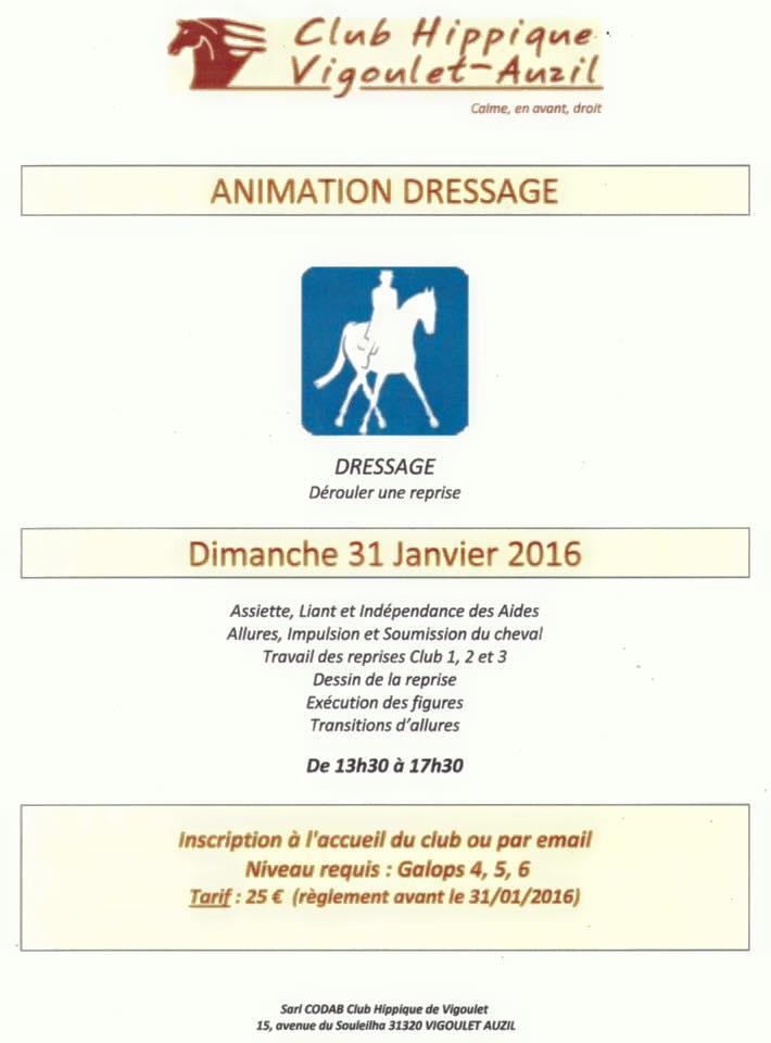 Animation Dressage Club Hippique Vigoulet-Auzil