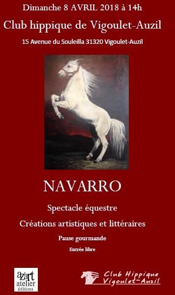 affiche-navarro-club-hippique-vigoulet-auzil